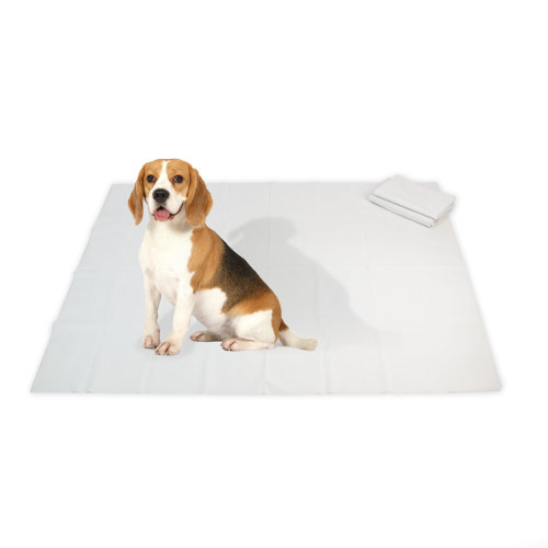 NAC HOME Playpen Floor Mat DOG MAT Dog Training Pad - Reusable, Waterproof and Unrippable for Pets Training - Wee and Poo Proof - Extra Large