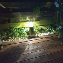 Duracell Solar LED Garden Lights