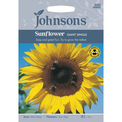 Johnsons Seeds - Pictorial Pack - Flower - Sunflower Giant Single - 75 Seeds