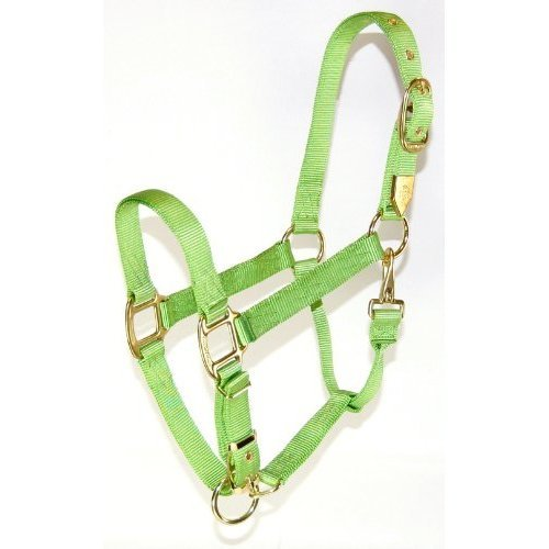 Hamilton 1-Inch Nylon Halter with Adjustable Chin, Lime Green - Large Size