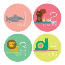 Lucy Darling Shop Monthly Baby Stickers  Baby Girl  Zoo Animals  Months 112