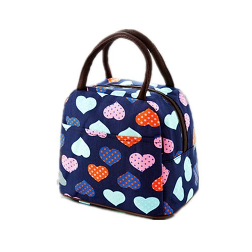 bd671c7bc7a6 DWE Lunch Bag, Lovely Oxford Waterproof Canvas Lunch Box for Women Kids and  Adults (8A)