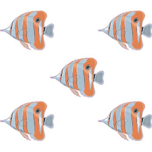 5 X Tropical Fish Stickers set f2b Tiles transfers