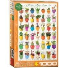 Eg60000654 - Eurographics Puzzle 1000 Pc - Cactus & Succulents