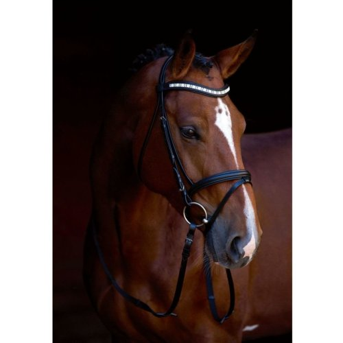 Kerbl Snaffle Bridle Shine-On Leather Full 323557