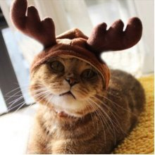Christmas Costume Pet Cat Doggy Antlers Cap Hat Pet Clothes