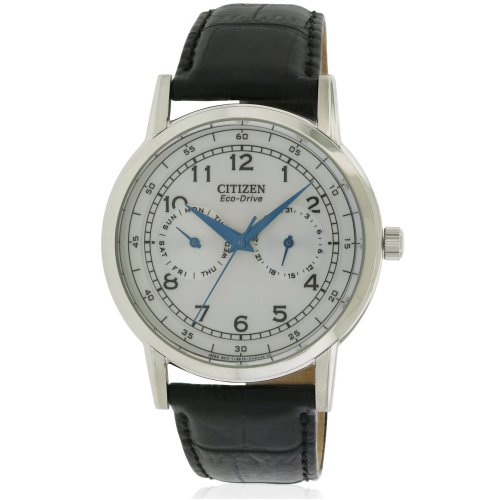 Citizen Eco-Drive Leather Mens Watch AO9000-06B