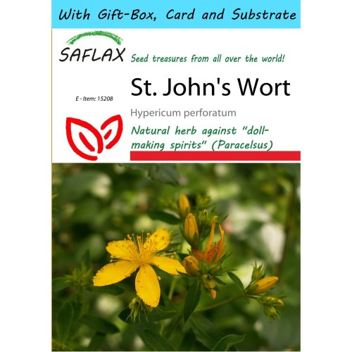 Saflax Gift Set - St. John's Wort - Hypericum Perforatum - 300 Seeds - with Gift Box, Card, Label and Potting Substrate
