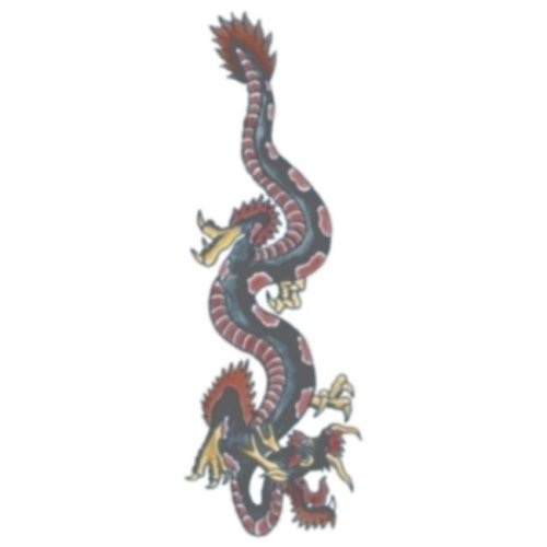 Costumes For All Occasions DF112 Tattoo Vintage Dragon