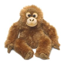 WWF Orangutan (medium)