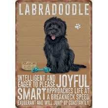 Dog Metal Sign - Black Labradoodle- Metal Sign Nostalgic Gift 20cm x 15cm