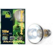 Basking Spotlamp Screw Fit 100w