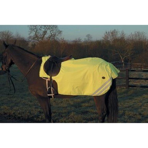Mark Todd Reflective Fleece Lined Exercise Sheet