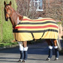 Shires Wessex Newmarket Fleece Rug