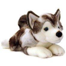 Keel Storm Husky Dog Soft Toy 50cm