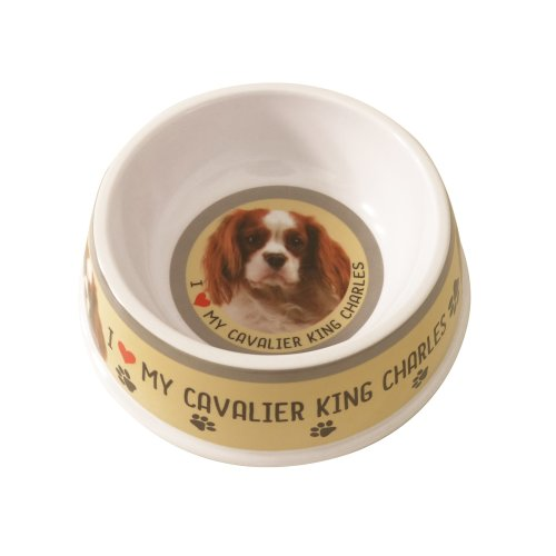 Cavalier King Charles Spaniel Dog Bowl   Cavalier King Charles Dog Dish
