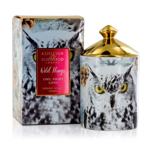 Ashleigh & Burwood Wild Things Luxury Scented Gift Boxed Candle Owl Night Long