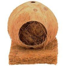 Parrot's Coconut Nesting Platform - James Steel Beaks Coco -  james steel beaks coco nesting platform