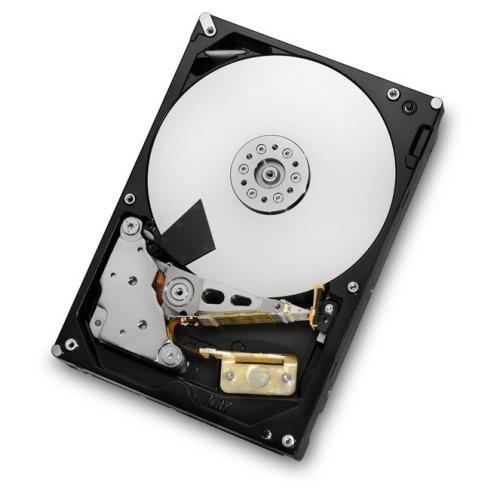 HGST Deskstar 4TB 4000GB Serial ATA internal hard drive