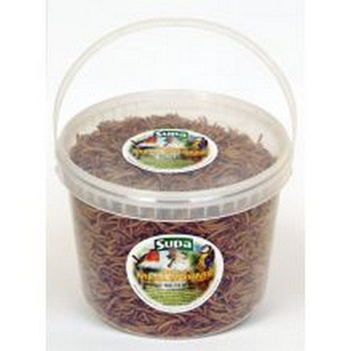 Supa Bucket Of Freeze Dried Mealworms For Birds