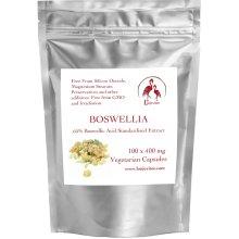 Lonjevitee Boswellia 100 x 400 mg Vegetarian Capsules