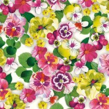 4 x Paper Napkins - Pansy All Over Yellow - Ideal for Decoupage / Napkin Art