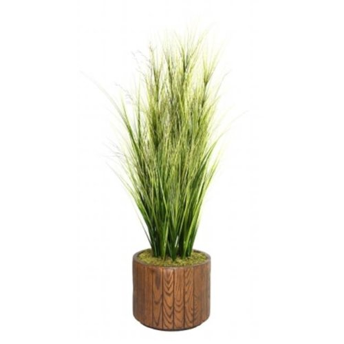 Minx NY VHX114202 Laura Ashley 65 in. Tall Onion Grass with Twigs in 16 in. Fiberstone Planter
