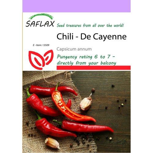 Saflax  - Chili - De Cayenne - Capsicum Annum - 20 Seeds