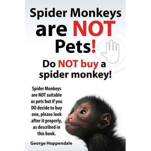 Spider Monkeys Are Not Pets! Do Not Buy a Spider Monkey! Spider Monkeys Are Not Suitable as Pets But If You Do Decide to Buy One, Please Look Afte...